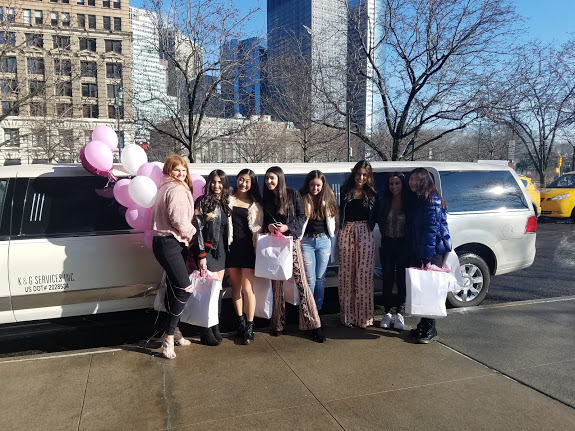 Carle Place NY  limousine